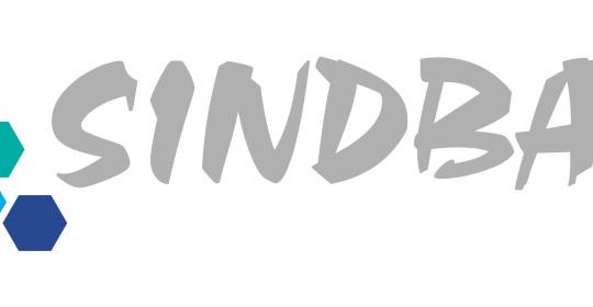 SINDBAD- firma przewozowa
